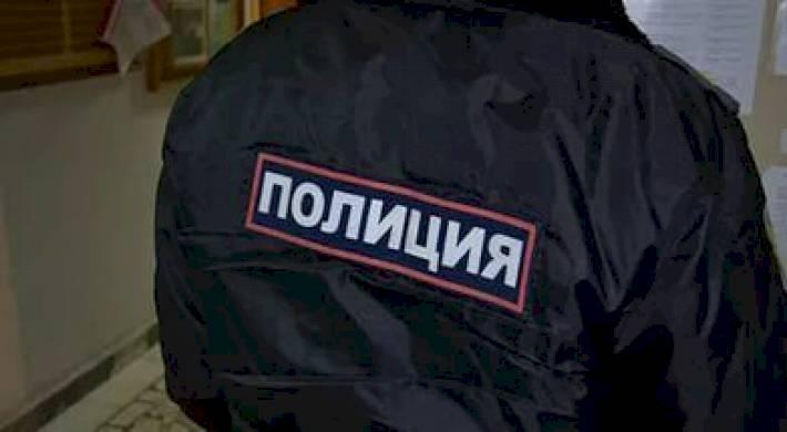 Полиция рф реферат кратко 4956