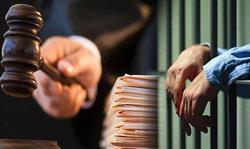 адвокат признал вину за подсудимого основания законность защита договоренность следователя