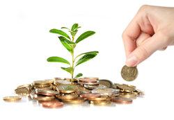 Ферментативные процессы какие фонды могут помочь деньгами вычет детей году