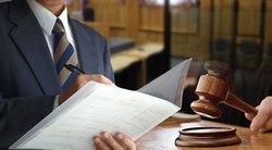 Участие Адвоката В Надзорном Суде Шпаргалка
