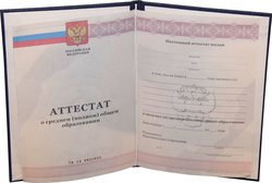Союз россия казахстан беларусь