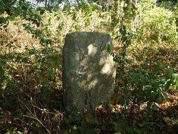 захоронение через сколько можно хоронить на месте старой могилы кто регулирует захоронения